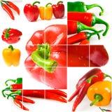 Helles reifes Gemüse Stockfoto