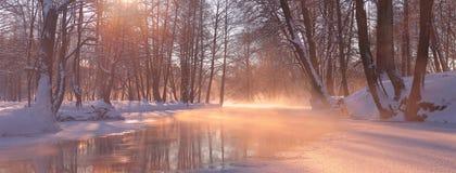 Helles Sonnenlicht belichtet weißen Schnee und gefriert durch Nebel lizenzfreie stockbilder