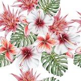 Helles tropisches nahtloses Muster mit Blumen Monstera hibiscus Bromelie Plumeria Dekoratives Bild einer Flugwesenschwalbe ein Bl stockfotos