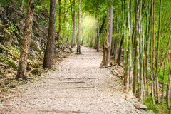 Hellfire pass, Kanchanaburi, Thailand Royalty Free Stock Photo
