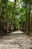 Hellfire Pass at Kanchanaburi, Thailand Royalty Free Stock Photo
