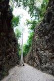Hellfire Pass at Kanchanaburi, Thailand Royalty Free Stock Photo