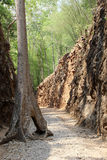 Hellfire Pass, railway cutting by prisoner of war Kanchanaburi, Royalty Free Stock Photo