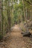 Hellfirepas wandelingssleep op bekend Birma aan de doodsspoorweg van Thailand Stock Fotografie