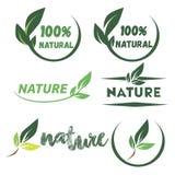 Hellgrüne Aufkleber mit Blättern für organisches, natürliches, das eco oder Bioprodukte lokalisiert Lizenzfreies Stockfoto