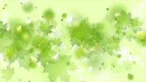 Hellgrüner glänzender Sommer lässt abstrakte Videoanimation vektor abbildung