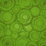 Hellgrüner Hintergrund Lizenzfreie Stockbilder