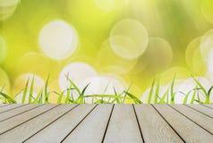 Hellgrünes Gras fängt Frühlings-Saison an Mit gelbem und hellem bokeh mit Sonnenlicht und Bretterboden Naturschönheits-Kopien-Rau Lizenzfreies Stockbild