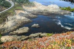 Helling met bloemen en rotsachtige kust wordt behandeld die royalty-vrije stock foto