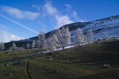 Helling na sneeuw in Alpen Royalty-vrije Stock Fotografie