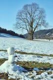 Helling van de boom en de sneeuw Stock Foto