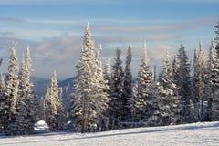 Helling voor het skiån en het snowboarding Stock Afbeelding