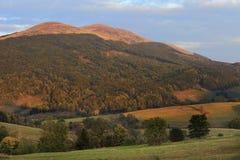 Hellingen van de Bieszczady-Bergen in de herfstseizoen in Zuidoostenpolen - het Nationale Park van Bieszczadzki Royalty-vrije Stock Fotografie