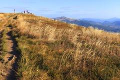 Hellingen van de Bieszczady-Bergen in de herfstseizoen in Zuidoostenpolen - het Nationale Park van Bieszczadzki Royalty-vrije Stock Foto