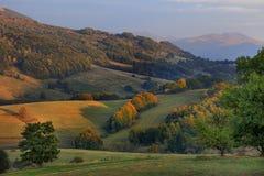 Hellingen van de Bieszczady-Bergen in Zuidoostenpolen - het Nationale Park van Bieszczadzki Stock Foto's