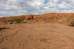 Hellingen van de vulkanische krater van Al Wahbah met vegetatie, Saudi-Arabië royalty-vrije stock afbeelding