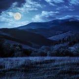 Hellingsweide met bos in berg bij nacht Stock Fotografie