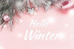 Hello övervintrar hälsningkortet med julbakgrund för pastellfärgade rosa färger Royaltyfri Foto