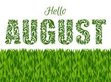 Hello AUGUST. Decorative Font made in swirls and floral elements. On a white background with grass Royalty Free Stock Photography
