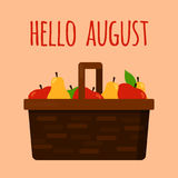 Hello august template with basket with fruits. Hello august postcard banner or poster template wicker basket with fruits red green apple and yellow pear. Vector Royalty Free Stock Photo