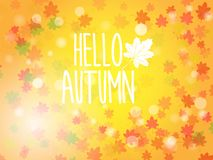 Hello autumn abstract nature background Royalty Free Stock Photography