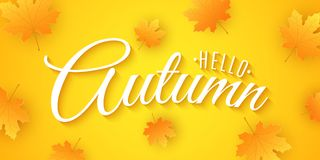 Hello Autumn. Advertising banner. Invitation greeting card. 3D calligraphy and lettering. Orange maple leaves. Drop leaves. Festiv. E cover. Vector illustration royalty free illustration