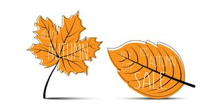 Hello Autumn. Autumn leaves. Big Autumn Sale. 50% off. Autumn leaves with shadow on blank background vector illustration