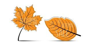 Hello Autumn. Autumn leaves. Big Autumn Sale. 50% off. Autumn leaves with shadow on blank background Vector Illustration