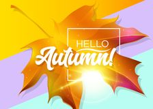 Hello Autumn! Autumn Vector Design with Yellow Maple Leaf. Golden Sunlight Flare, White Frame and Lettering on Pastel Background. Seasonal Illustration for royalty free illustration