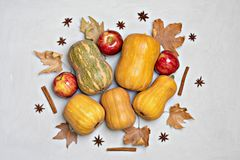 Hello autumn background: Apples, pumpkins and fallen leaves on white background. Copy space for text. stock photography