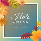 Hello Autumn Background with Autumn Leaves Template Design. Hello Autumn Poster Design with Autumn Seasonal Leaves and Blue Background Poster Template Design vector illustration