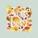 Hello Autumn Background. Stock Image