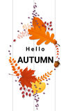 Hello autumn background with decorative wreath on wooden board Royalty Free Stock Photo