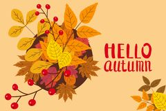 Hello Autumn, background with falling leaves, yellow, orange, brown, fall, lettering, template for poster, banner. Hello Autumn, background with falling leaves royalty free illustration