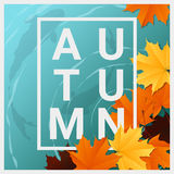 Hello autumn background with maple leaves floating on the water Stock Photo