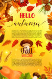Hello autumn banner design with fall nature frame Stock Image