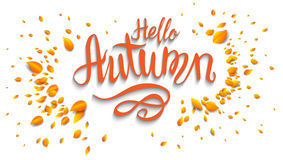 Hello autumn banner. Autumn leaves card template for design banner,ticket, leaflet, card, poster and so on Royalty Free Stock Images
