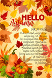 Hello Autumn banner with orange leaf and pumpkin Royalty Free Stock Images