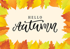 Hello autumn banner template with bright colorful leaves. Fall seasonal calligraphy. Poster, card, gift tag, label design. Vector illustration Stock Photo