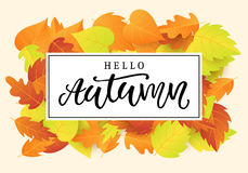 Hello autumn banner template. Fall seasonal calligraphy. Poster, card, gift tag, label design. Vector illustration Stock Photo