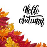 Hello autumn.Border with autumn leaves. Design element for emblem, poster, card, banner, flyer, brochure. Vector illustration royalty free illustration