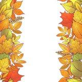 Hello autumn borders Royalty Free Stock Image