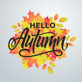 Hello Autumn. Bright abstract background with leaves. Modern han. Dmade vector lettering. Vector illustration Stock Images