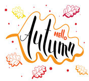 Hello Autumn and bright leaves handwritten card. Royalty Free Stock Photos
