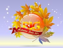 Hello autumn calligraphy with illustration of bunch of maple and Stock Image