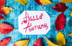 Hello Autumn calligraphy note with fallen leaves. On blue board royalty free stock photo