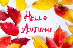 Hello Autumn calligraphy note with fallen leaves. On white paper royalty free stock photos