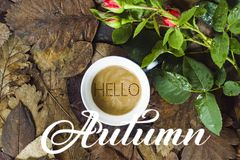 Hello autumn card foto stock illustration