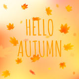 Hello autumn card, vector illustration with text. Hello autumn card. Vector illustration of greeting text with leaves on colorful background Royalty Free Stock Images