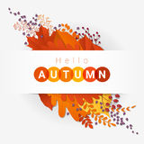 Hello autumn with colorful leaves and fruits background Stock Image